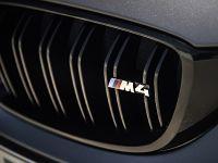 2016 BMW M4 GTS , 30 of 37