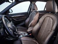2016 BMW X1 Sports Activity Vehicle, 9 of 20