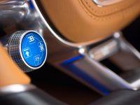 2016 Bugatti Chiron, 16 of 30
