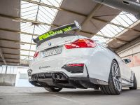 2016 Carbonfiber Dynamics BMW M4 M4R , 9 of 15