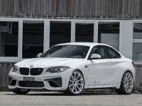 2016 dAHLer BMW M2 Coupe , 3 of 30