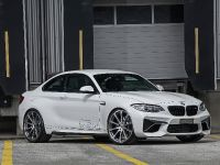 2016 dAHLer BMW M2 Coupe , 5 of 30