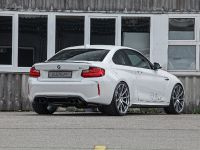 2016 dAHLer BMW M2 Coupe , 10 of 30