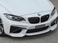 2016 dAHLer BMW M2 Coupe , 16 of 30