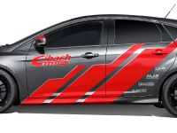 thumbnail image of 2016 Eibach Ford Focus RS