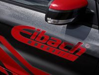 2016 Eibach Ford Focus RS , 6 of 7