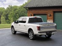 2016 Ford F-150 Limited, 9 of 17