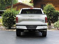2016 Ford F-150 Limited, 10 of 17