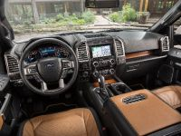 2016 Ford F-150 Limited, 15 of 17