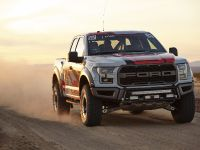 2016 Ford F-150 Raptor, 4 of 16