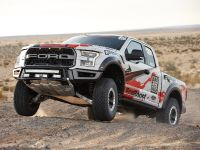2016 Ford F-150 Raptor, 7 of 16