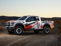 2016 Ford F-150 Raptor, 10 of 16