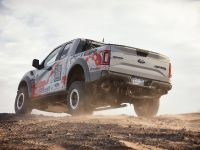 2016 Ford F-150 Raptor, 13 of 16