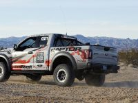 2016 Ford F-150 Raptor, 14 of 16