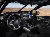 2016 Ford F-150 Raptor, 15 of 16