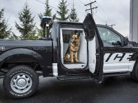 2016 Ford F-150 Special Service Vehicle , 3 of 6