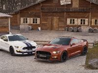 2016 Ford Mustang Geiger GT 820, 5 of 12