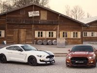 2016 Ford Mustang Geiger GT 820, 6 of 12