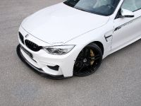 2016 G-Power BMW M3 F80 and M4 F82 , 8 of 12