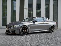 thumbnail image of 2016 G-POWER BMW M4 GTS F82