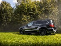 2016 Larte Design Mercedes-Benz GLS , 7 of 10