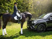 2016 Larte Design Mercedes-Benz GLS , 9 of 10