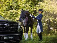 2016 Larte Design Mercedes-Benz GLS , 10 of 10