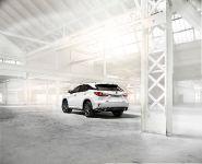 2016 Lexus RX 350 F Sport, 11 of 25