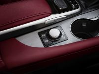 2016 Lexus RX 350 F Sport, 21 of 25