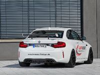 2016 LIGHTWEIGHT BMW M2, 8 of 21