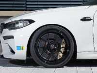 2016 LIGHTWEIGHT BMW M2, 14 of 21