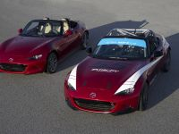 2016 Mazda MX-5 Cup, 2 of 15