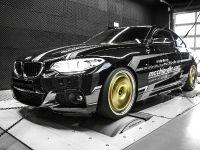 2016 mcchip-dkr BMW 220i MC320 , 1 of 14