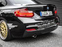 2016 mcchip-dkr BMW 220i MC320 , 9 of 14