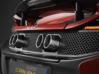 2016 McLaren 560S Can-Am Limited, 12 of 14