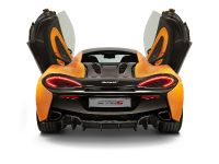 2016 McLaren 570S Coupe, 16 of 29