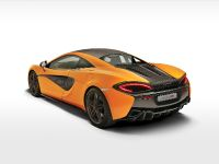 2016 McLaren 570S Coupe, 18 of 29