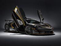 2016 McLaren 570S GT4 , 2 of 6