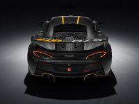 2016 McLaren 570S GT4 , 6 of 6