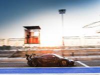 2016 McLaren P1 GTR, 6 of 10