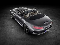 2016 Mercedes-AMG GT Roadsters, 6 of 15
