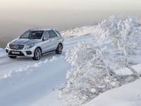 2016 Mercedes-Benz GLE, 16 of 48