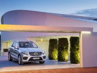 2016 Mercedes-Benz GLE, 20 of 48