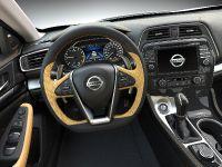 2016 Nissan Maxima, 27 of 34