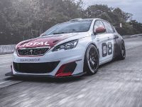 2016 Peugeot 308 Racing Cup , 6 of 18