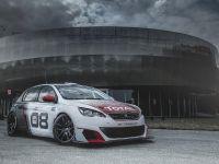 2016 Peugeot 308 Racing Cup , 8 of 18
