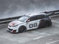 2016 Peugeot 308 Racing Cup , 9 of 18