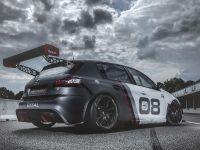 2016 Peugeot 308 Racing Cup , 11 of 18
