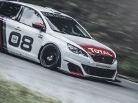 2016 Peugeot 308 Racing Cup , 13 of 18