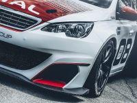 2016 Peugeot 308 Racing Cup , 16 of 18